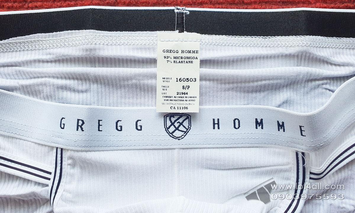 Quần lót nam Gregg Homme 160503 Evoke Brief White