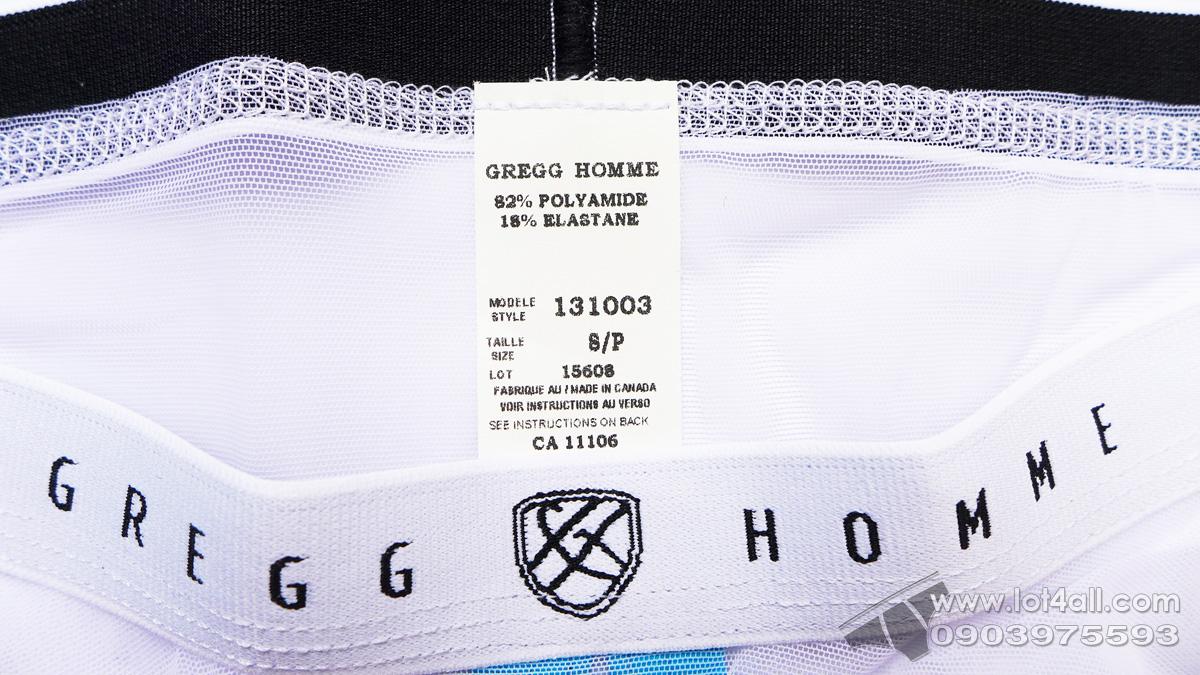 Quần lót nam Gregg Homme Erotik Ultra Sheer Mesh C-Ring Brief White